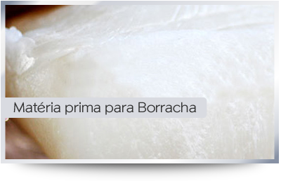 Borracha